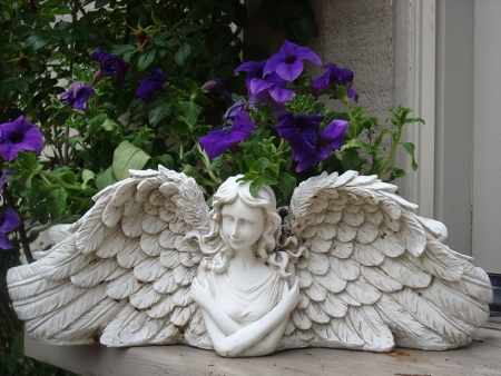 99-026 Angel Face planter